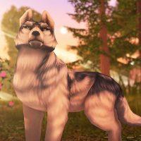 Wolf Tales – Online Animal Sim APKs MOD